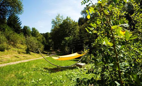Feriendorf Forstgut in Bayern: Ruhe und Erholung in der Ferienanlage im Nationalpark Bayerischer Wald