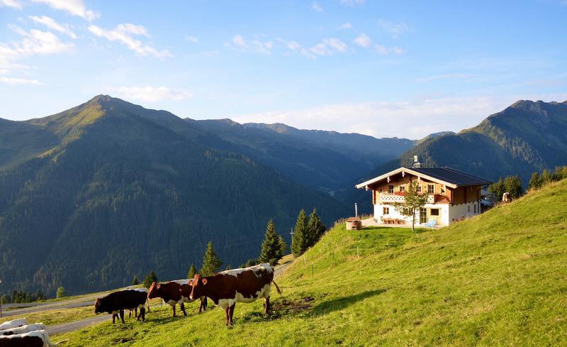 Sommerurlaub in Saalbach-Hinterglemm auf der Alm in der Wallegg Lodge in Salzburg