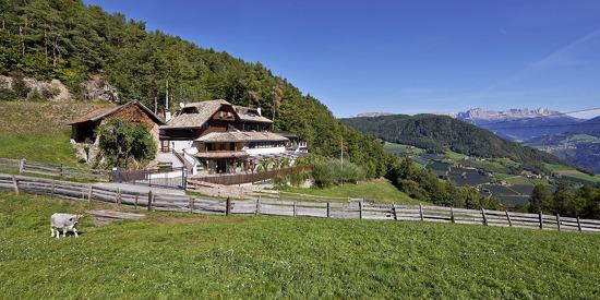 Sommerurlaub im Alm-Chalet Grumer in Alleinlage in Südtirol