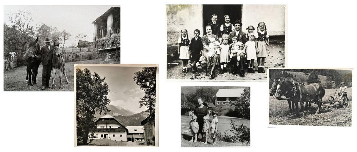 landgut-moserhof-geschichte